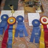 horse show champion ribbons